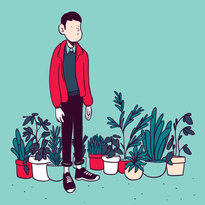 mikko_plant